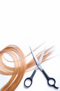Barber scissors with lock of blonde hair isolated Royalty Free Stock Photo