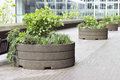 Barbican alley with plants Royalty Free Stock Photo