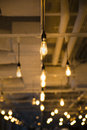 Bare bulb ceiling lights several artistic bulbs hang from the light up Royalty Free Stock Image
