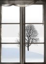 Bare tree in sparse winter landscape viewed through old window Royalty Free Stock Photography