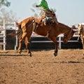 Bareback Bucking Bronc riding At Country Rodeo Royalty Free Stock Photo