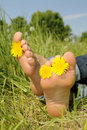 Barefoot in a meadow Royalty Free Stock Photos
