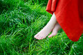 Barefoot in nature a young woman s feet amongst green grass Royalty Free Stock Image
