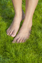 Barefoot walking on grass softness Royalty Free Stock Photo