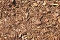 Bark mulch Stock Image
