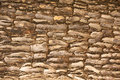 Bark of tree fragment cracked Royalty Free Stock Photography