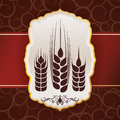 Barley design concept and wheat vector illustration Stock Photos