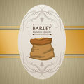 Barley design concept and wheat vector illustration Royalty Free Stock Photo