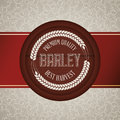 Barley design concept and wheat vector illustration Stock Photography