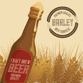 Barley design concept and wheat vector illustration graphic Royalty Free Stock Photo