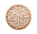 Barley grain seed Royalty Free Stock Photo
