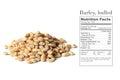 Barley grain seeds Royalty Free Stock Photo