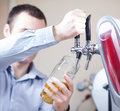 Barman draft beer Stock Image