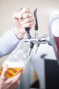 Barman draft beer Royalty Free Stock Photo