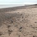 Barmston beach East Yorkshire coast England Royalty Free Stock Photo