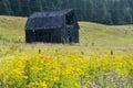 Barn In Flowers