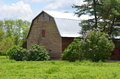 Barn a with a gambrel roof in a grassy field with flowering spring bushes Royalty Free Stock Image