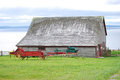 Barn and old farm wagon exterior of by sea with in green foreground field Royalty Free Stock Image