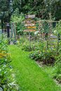 Colorful cozy little garden Royalty Free Stock Photo