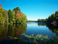 Barnum pond,adirondack state park Royalty Free Stock Photos