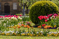 Baroque garden with flowers and tulips Royalty Free Stock Photo