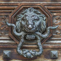 Baroque style lion door knob on a wooden Royalty Free Stock Photography