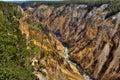 Barranca de Yellowstone, Yellowstone NP Foto de archivo libre de regalías