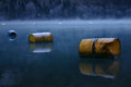 Barrel fleet rusty old barrels as buoys on a cold lake in winter covered with frost Stock Photos