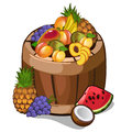 Barrel with mouth-watering tropical fruits