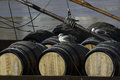 Barrels of port wine Royalty Free Stock Photo