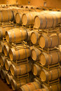 Barrels in wine cellar the famous of vineyard guado al tasso bogheri tuscany italy Stock Image