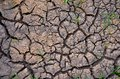 Barren earth. Dry cracked earth background. Cracked mud pattern. Soil In cracks.Creviced texture.Drought land. Environment drought Royalty Free Stock Photo