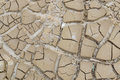 Barren earth. Dry cracked earth background. Cracked mud pattern. Soil In cracks.Drought land. Environment drought texture. Royalty Free Stock Photo