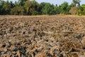 Barren ground photo taken on april th Stock Photos