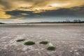 Barren ground sunset general illustration Royalty Free Stock Images