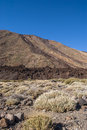 Barren land volcanic landscape with traces of lava streams teide national park tenerife canary islands spain Royalty Free Stock Photography