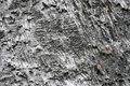 Basalt wall Royalty Free Stock Photography
