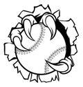 Baseball Ball Eagle Claw Talons Tearing Background Royalty Free Stock Photo