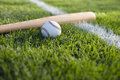 Baseball and bat in grass on a stripe Royalty Free Stock Photo