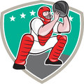 Baseball Catcher Catching Shield Cartoon Royalty Free Stock Images