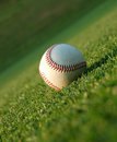 Baseball on the field Royalty Free Stock Image