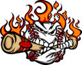 Baseball Flaming Face Biting Bat Vector Image Royalty Free Stock Image