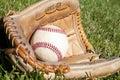 Baseball glove Royalty Free Stock Photo