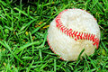 Baseball on grass Royalty Free Stock Image