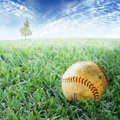 Baseball in grass Stock Image