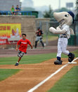 Baseball mascot race Stock Photo