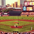 Baseball orioles baltimore summer camdenyards Stock Images
