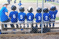 Baseball team in numerical order.. Royalty Free Stock Photo