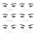 6 basic eyebrow shapes with captions.