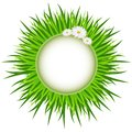Spring. Wreath of Grass . Bright spring concept illustration with flowers.